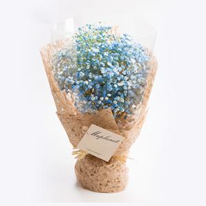 鲜花/星空之恋: 匠心设计,满天星花束  [包 装]:玻璃纸内