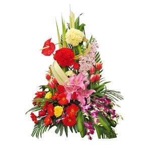 鲜花/祝福永相伴: 粉色百合、红色太阳花、红色郁金香、红色和黄色康