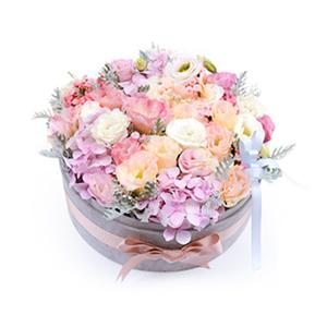 鲜花/简爱: 桔梗(白色、粉色、香槟色桔梗各7枝)  [包