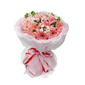 鲜花/粉红记忆  :19枝粉色扶郎,白色小菊点缀,栀子叶丰满。 [