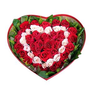 鲜花/幸福环绕: 17只戴安娜粉玫瑰,31只红玫瑰  [包 装