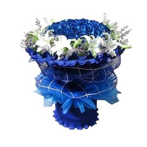 鲜花/蓝色至爱: 蓝色妖姬66枝,百合11枝  [包 装]:蓝