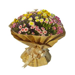 鲜花/大城小爱 : 各色小雏菊(因属特殊花材,需提前三天以上预订)