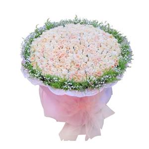 鲜花/温柔的记忆: 365枝香槟玫瑰  [包 装]:粉色卷边纸圆