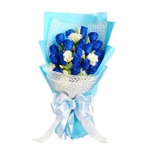 鲜花/海誓山盟: 19枝蓝色妖姬  [包 装]:白色纱网及蓝色