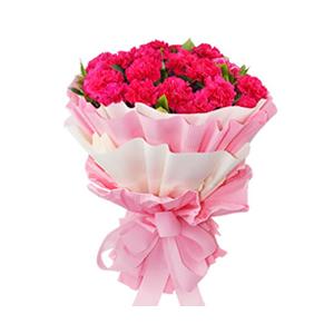 鲜花/只因有您 :33枝康乃馨(根据各地货源使用桃红色或者红色康乃