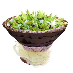 鲜花/幸福永远: 精品白百合21枝单独包装  [包 装]:紫色