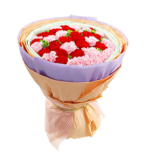 鲜花/温馨的祝福: 20枝粉色康乃馨,20枝红色康乃馨  [包