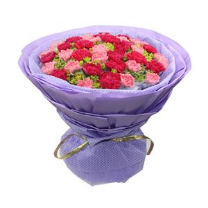 鲜花/妈妈你最好: 20枝红色康乃馨独立包装,20枝粉色康乃馨独立
