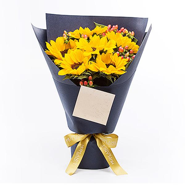 鲜花/守护使者: 6朵太阳花,红豆配花  [包 装]:深蓝色高
